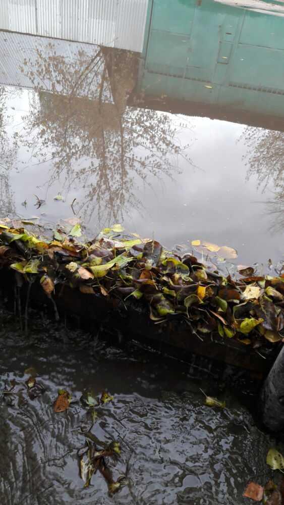 Сброс дождевой воды с посёлка в сад